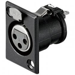 Mikrofonpanel 3-pins hun, XLR